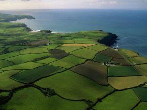 Как происходит разграничение государственной собственности на землю